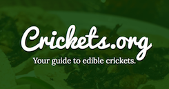 Crickets.org